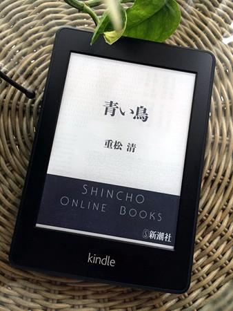 20150704book2